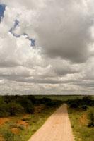 africaday3scenery.jpg
