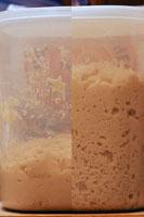 breaddough.jpg